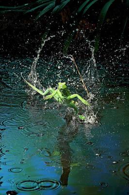 Green Basilisk Or Plumed Basilisk Poster