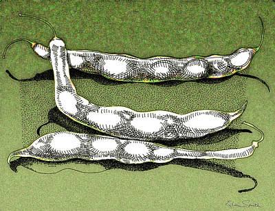 Green Beans Poster by Richard Glen Smith