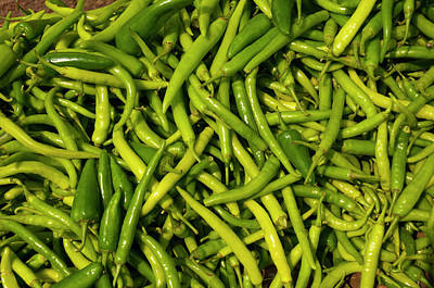 Green Chilies For Sale, Fatehpur Sikri Poster by Inger Hogstrom