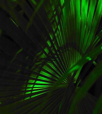 Green Fan Poster