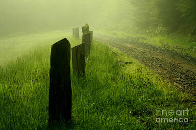 Green Fog Poster
