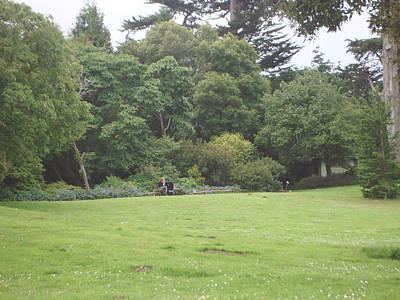 Poster featuring the photograph Green Garden by Hiroko Sakai