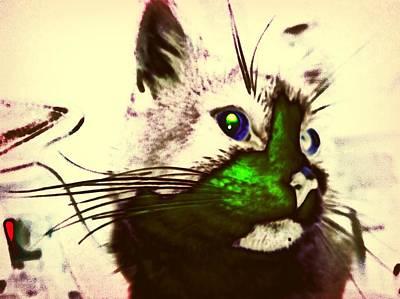 Green Spot Kitty Poster by Eddie G