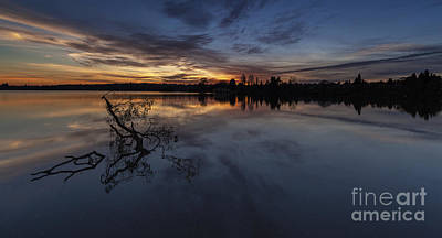 Greenlake Sunset With A Fallen Tree Poster by Mike Reid