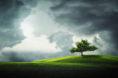 Grey Clouds Over Field With Tree Poster