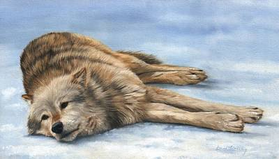 Grey Wolf Painting Poster by David Stribbling