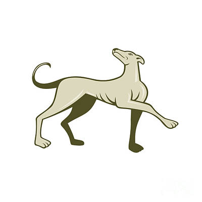 Greyhound Dog Marching Looking Up Cartoon Poster