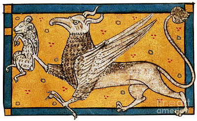 Griffin, Legendary Creature Poster by Photo Researchers