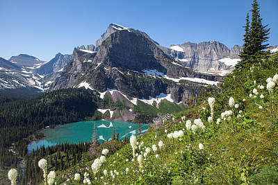 Grinnell Lake With Beargrass Poster
