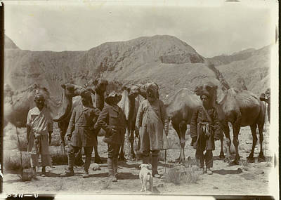 Group Posed With Camels Poster by British Library