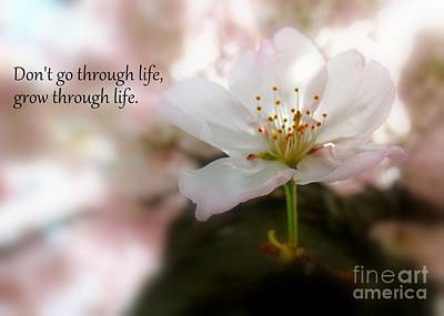 Grow Through Life Poster by Patti Whitten