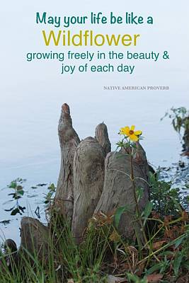 Growing Freely Poster by Cindy Veroline