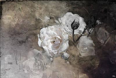Grunge White Rose Poster