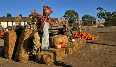 Poster featuring the photograph Guarding The Pumpkin Patch by Michael Gordon