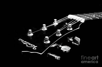 Guitar Ventura Head Stock 1 Poster