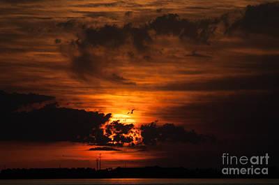 Gulf Coast Sunset 1 Poster