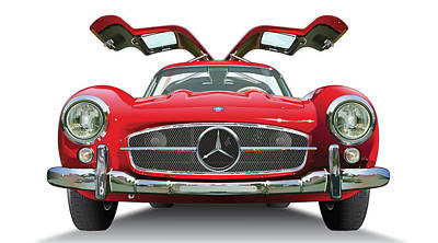 Gull Wing On White Poster by Alain Jamar