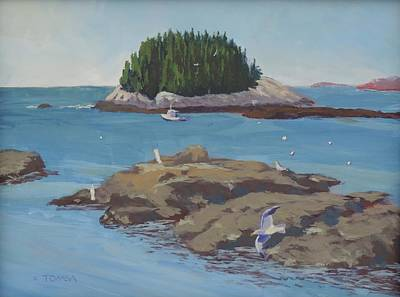 Gulls At Five Islands Poster