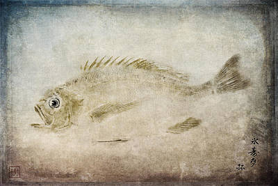Gyotaku Fish Rubbing Japanese Poster by Carol Leigh