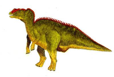 Hadrosaurus Poster by Michael Vigliotti