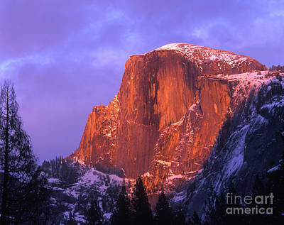 Half Dome Alpen Glow Poster by Jim and Emily Bush