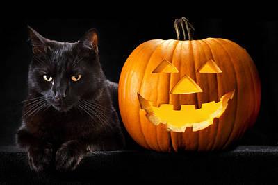 Halloween Pumpkin Black Cat Poster by Dirk Ercken