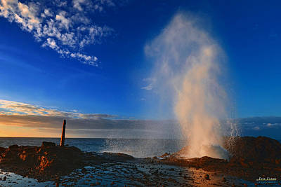 Halona Blowhole Geyser In The Morning Poster by Aloha Art