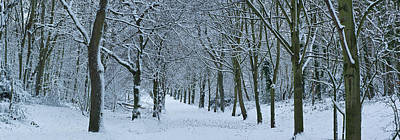 Hampstead Heath In Winter, North Poster