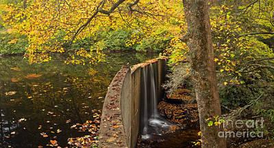 Hampton Lake In Fall Poster by Matt Tilghman