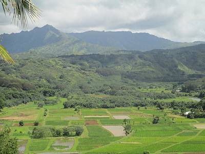 Poster featuring the photograph Hanalei by Alohi Fujimoto