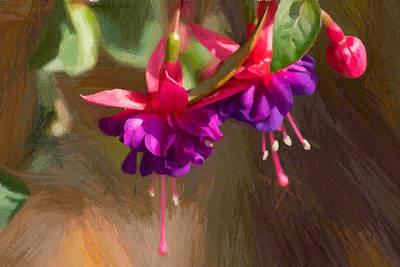 Hanging Flower Basket Poster