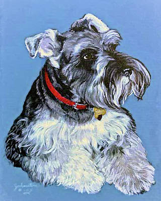 Hans The Schnauzer Original Painting Forsale Poster by Bob and Nadine Johnston