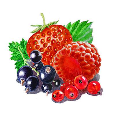 Happy Berry Mix Poster by Irina Sztukowski