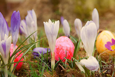 Poster featuring the photograph Happy Easter 2 by Christine Sponchia