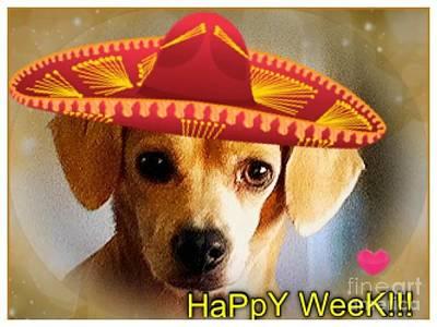 Happy Week.. Poster