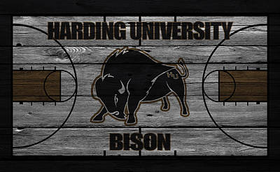Harding University Bison Poster by Joe Hamilton