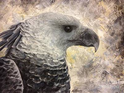 Harpy Eagle Study In Acrylic Poster by K Simmons Luna