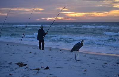 Poster featuring the photograph Harry The Heron Fishing With Fisherman On Navarre Beach At Sunrise by Jeff at JSJ Photography