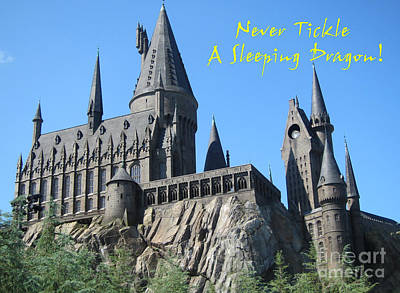 Harry's Hogwarts Poster