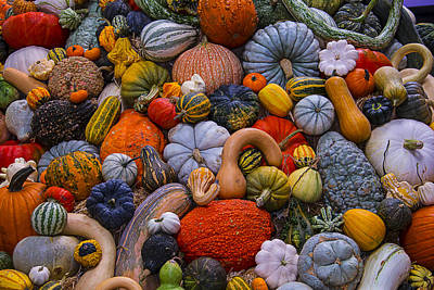 Harvest Abundance Poster by Garry Gay
