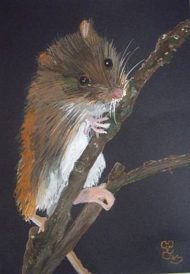 Harvest Mouse Poster by Carole Robins