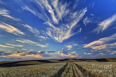 Harvest Sky Poster by Mark Kiver