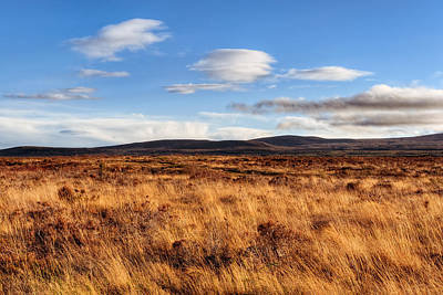 Haunting Beauty Of Culloden Moor Poster by Mark E Tisdale