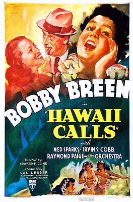 Hawaii Calls, Top Center Ned Sparks Poster