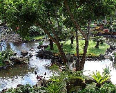 Hawaiian Pond  Poster
