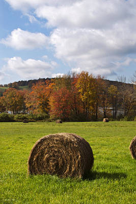 Hay Bale In Country Field Poster by Christina Rollo