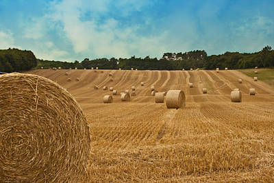 Hay Bales Poster by Georgia Fowler