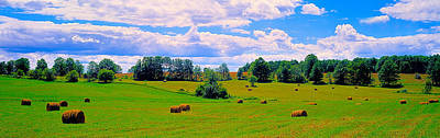 Hay Bales In A Landscape, Michigan, Usa Poster