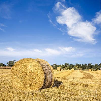 Hay Bales Under Deep Blue Summer Sky Poster