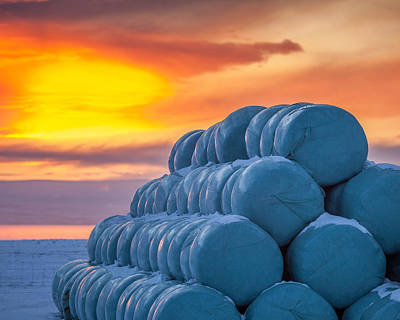 Hay Bales Wrapped In Plastic For Winter Poster by Panoramic Images